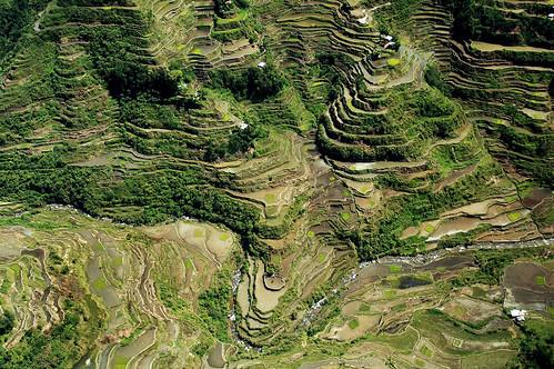 フリー写真素材, 自然・風景, 田畑・農場, 棚田, フィリピン,