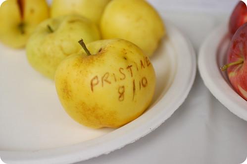 Pristine apple