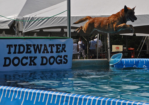 Dock Dogs (2)