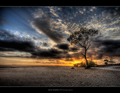 Again ([ Kane ]) Tags: ocean sea sky sun tree clouds sunrise sand brisbane explore qld ripples kane hdr wellingtonpoint gledhill kanegledhill vosplusbellesphotos kanegledhillphotography
