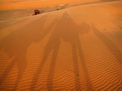 Camel Shadows-Erg Chebbi Sand Dunes-Sahara Desert-Morocco (mikemellinger) Tags: africa shadow sahara canon landscape sand scenery shadows desert dunes north camel morocco camels sanddunes erg ergchebbi chebbi tonemapped sx10 sx10is