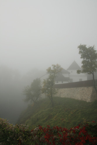 A foggy morning at Nové Hrady