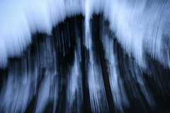 (-Antoine-) Tags: park blue trees winter snow canada motion blur tree nature forest movement blurry quebec snowy hiver north sigma bleu arbres motionblur québec invierno nordic neige 1020mm 2008 1020 foret arbre parc saguenay gauthier forêt nord flou mouvement chicoutimi boreal taiga wintery nordique sigma1020mm boreale boréale boréal bouge sigma1020 taïga rosaire hivernal rosairegauthier borealie saguenaylacstjean saguenaylacsaintjean borealia nordicite nordicity rosairegaut0151 ©antoinerouleau