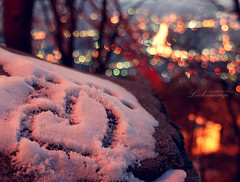 I saw the first snow of 2009 in Seoul. (ShanLuPhoto) Tags: travel winter snow heart bokeh korea seoul southkorea   seoultower   republicofkorea   nseoultower  nansam