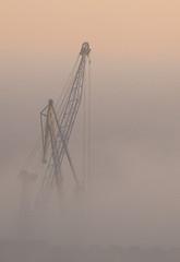 Gruas en la niebla (sacre) Tags: corua barcos ships galicia