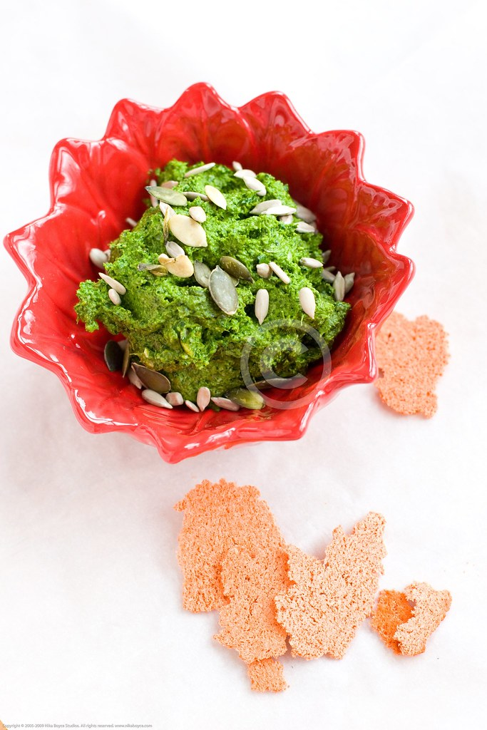 Cilantro Pesto - Heavy Metal detox