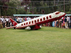 OOTY_Flower Show_2009 (5)