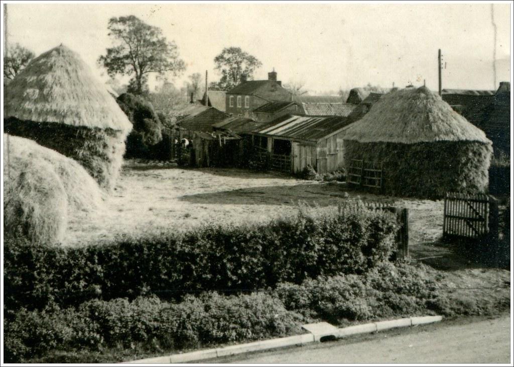Driver's Farm, Little Thetford, 1950s