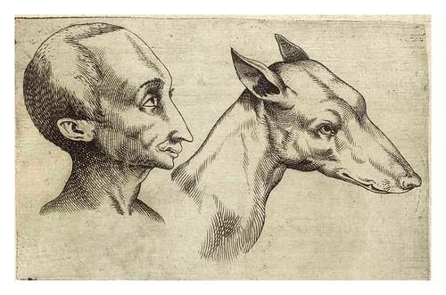 005-De humana physiognomonia- Giambattista della Porta 1586
