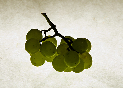 Freak Grapes