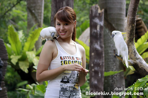me and white cockatoo parrots