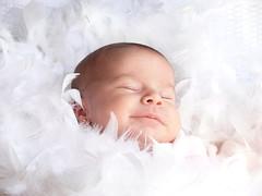 [フリー画像] [人物写真] [子供ポートレイト] [外国の子供] [赤ちゃん] [寝顔/寝相/寝姿]      [フリー素材]