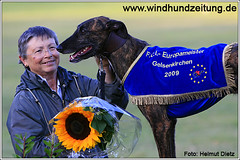 FCI-EM-2009-Sieger: Galgo-Rüden