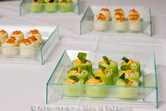 Canadian Chefs' Congress 2010 announced (Tiny Bites) Tags: park canada vancouver aquarium downtown bc canadian announcement event congress stanley conference oceans tomorrow 2010 chefs tinybitesca aquawest
