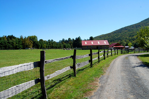 Woodstock Farm Animal Sanctuary