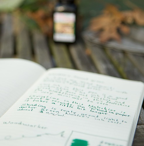 Noodler's Forest Green