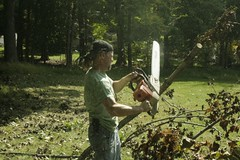 _MG_6489.JPG (zimbablade) Tags: trees sleepyhollow dougmiller videopoem