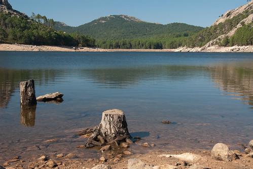 Staudammgrund