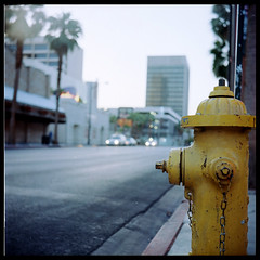 Looking South (Bright Lights, Vegas Nights) Tags: street vegas blur 120 6x6 tlr film yellow mediumformat square bokeh firehydrant squareformat twinlensreflex yashicad downtownlasvegas canoscan8800f ektar100 sekonicl308s