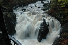 Hermitage Dunkeld - October 2009 135 (Neil A Martin) Tags: forest hermitage dunkeld