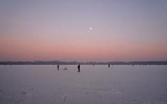 Frozen lake (Peter Hilton) Tags: rotterdam iceskating kralingseplas