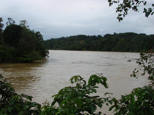 Rajang River by watchsmart, on Flickr