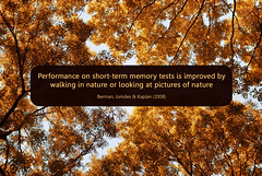 walking in nature helps memory