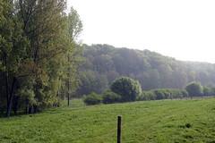 Neigembos, Meerbeke (Erf-goed.be) Tags: geotagged bos oostvlaanderen ninove gooik neigembos meerbeke neigem archeonet geo:lon=4064 geo:lat=508125