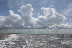 cloud (The Family Dog) Tags: blue sea sky cloud seascape color beach water clouds composition waddenzee landscape wadden waves explore ameland lucht capture frontpage