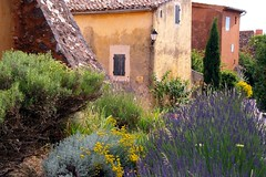 The yellow house (Johan_Leiden) Tags: flowers houses france yellow french village lavender provence ochre roussillon abigfave aplusphoto ysplix gettyr