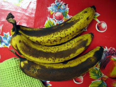 Future Banana Muffins