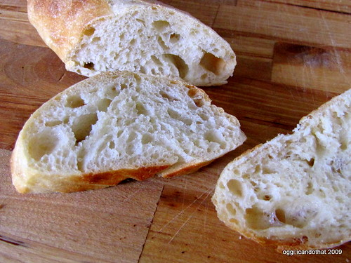 No-Knead French Baguette