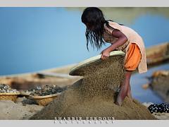 The Sand Girl (Shabbir Ferdous) Tags: portrait people girl work sand photographer shot sylhet bangladesh childlabor sieve bangladeshi ef70200mmf28lisusm canoneos5dmarkii shabbirferdous bholagonj wwwshabbirferdouscom shabbirferdouscom