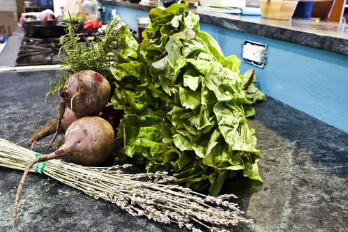 rosemary beets lettuce lavendar