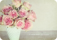 """Be strong, go with your heart, and believe in miracles because anything...anything can happen."" (polkadotandplaid) Tags: pink flowers roses stilllife white texture beauty quote bloom vase milkglass florabellatextures"