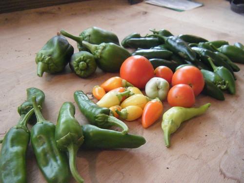 Pepper haul.