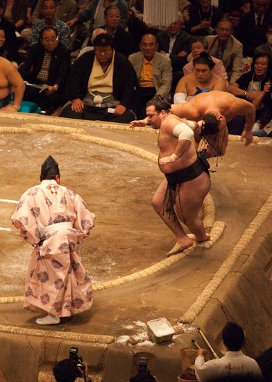 sumo_wrestling_5912