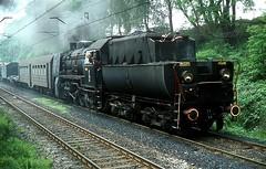 Ty45 144  bei Pyskowice  09.06.81* (w. + h. brutzer) Tags: analog train nikon poland eisenbahn railway zug trains steam polen locomotive dampflok lokomotive pkp pyskowice eisenbahnen dampfloks ty45 webru