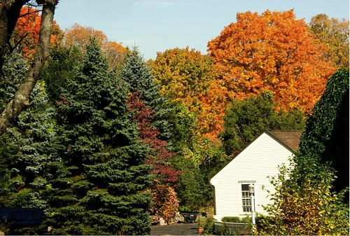 Greenfield Hill, Fairfield, CT. - fall colors