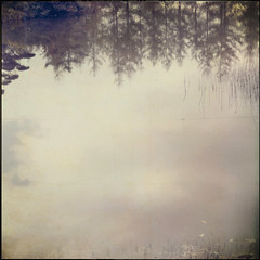 * (miu37) Tags: autumn trees reflection nature explore  frontpage subtraction artlibre artlibres nikond700 creamoffugu thanksforthetexture pickyimperfection lesbrmes