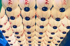 Lanterns (a l e x . k) Tags: film japan tokyo shinjuku pentax   lantern supera m5014
