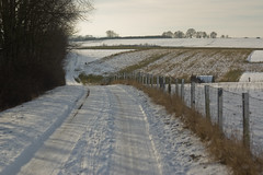 walking path (malinowy) Tags: schnee winter snow berg leuven walking relax 50mm nikon focu
