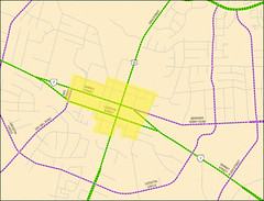 potentially eligible streets in Leesburg (image courtesy of CNU)