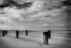 from here you can almost see the sea (-justk-) Tags: sea bw copyright seagulls clouds coast belgium blankenberge northsea hdr orton davidgray blackwhitephotos naturescreations allmyimagesarecopyrighted©allrightsreserveddonotusecopyandeditmyimageswithoutmypermission