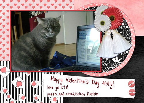 Kashim's Valentine for Holly
