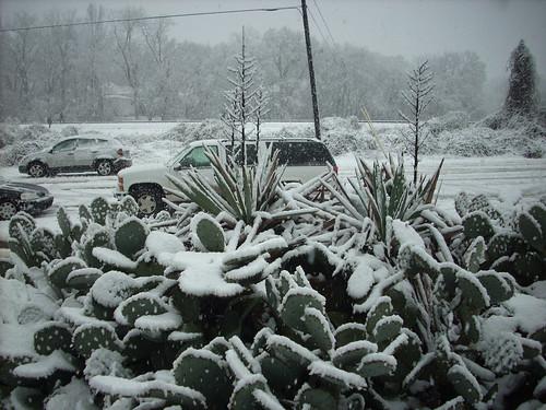 SNOW 2630