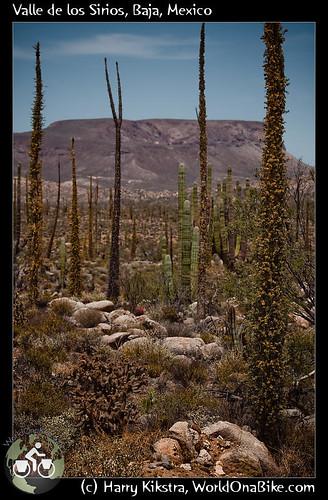 Valle de los Sirios, Baja, Mexico por exposedplanet.
