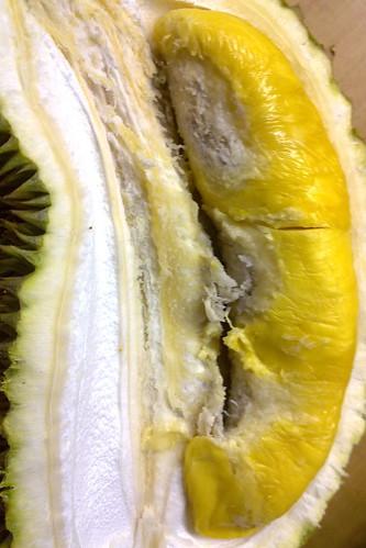 Cat Mountain King durian