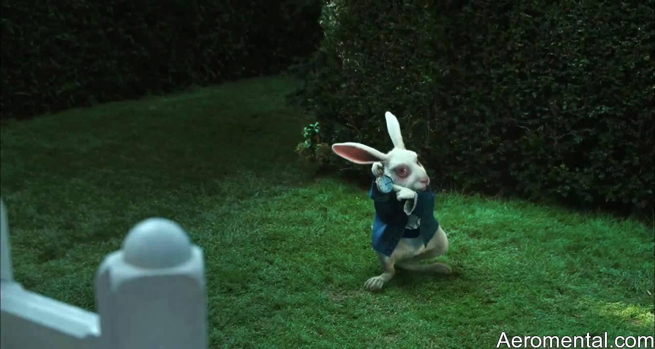 Alicia en el País de las Maravillas HD Conejo blanco