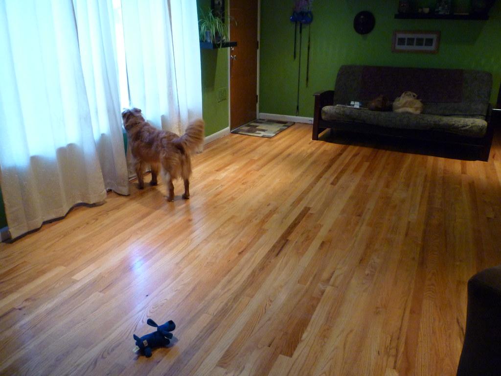 Look at that clean floor!
